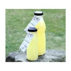 Low Carb Sirup Citronový 200 ml