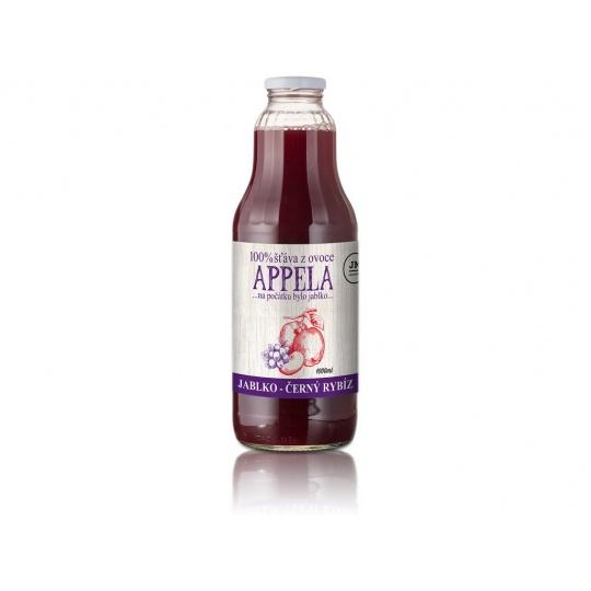 Jablko - černý rybíz 1l - 100% přírodní šťáva