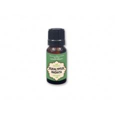 Bio esenciální olej 100% - Eukalyptus 10ml
