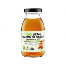 Šťáva 100% jablko - skořice 200ml