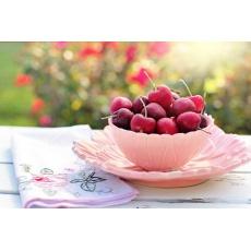 Lyofilizované višně | sušené mrazem 50g