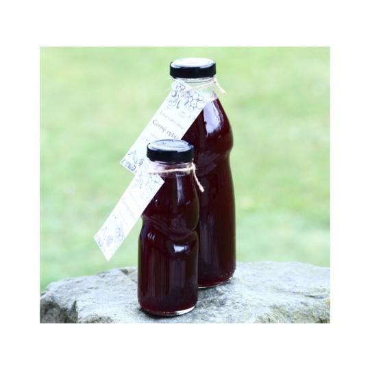 Low Carb Sirup Rybízový 500 ml