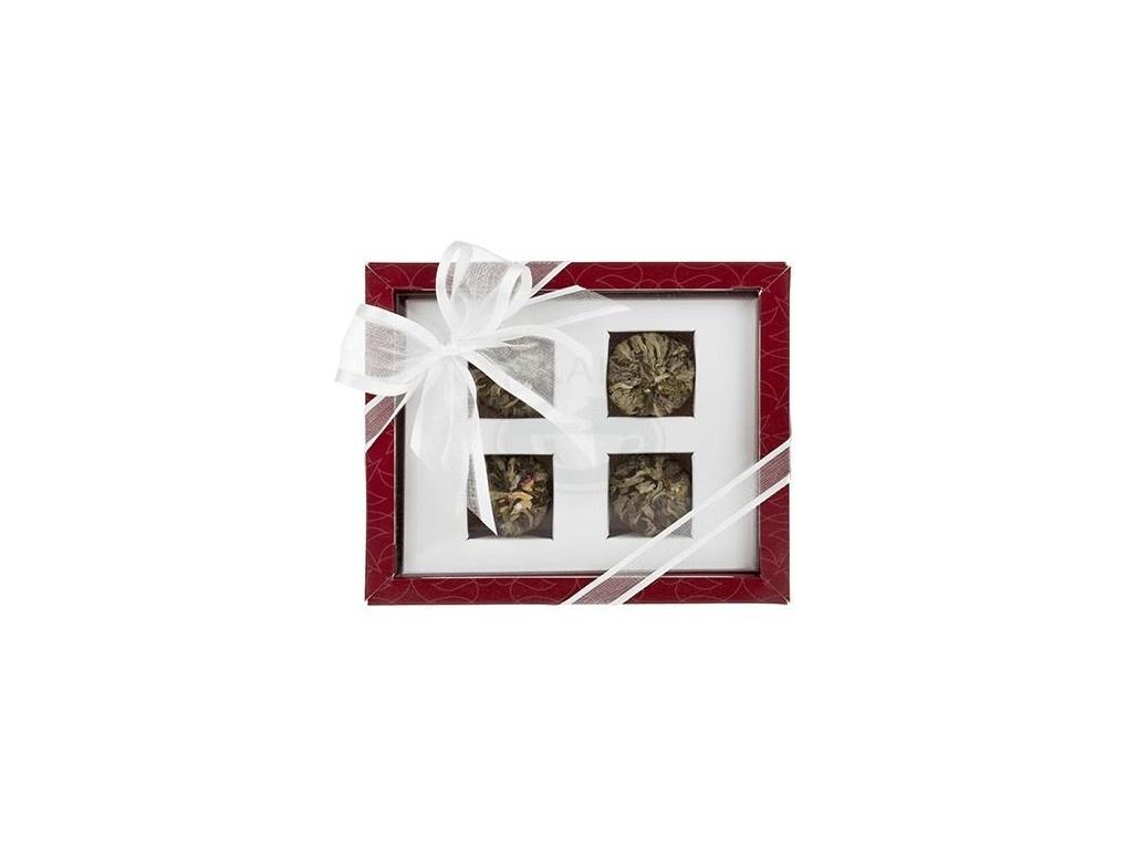 Asteria červená - set kvetoucích čajů