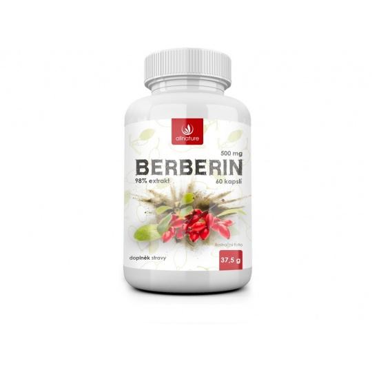 Berberin Extrakt 98% 500mg