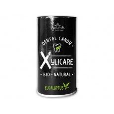 Bio Xylitolové bonbóny Eucalyptus 95g - 25ks
